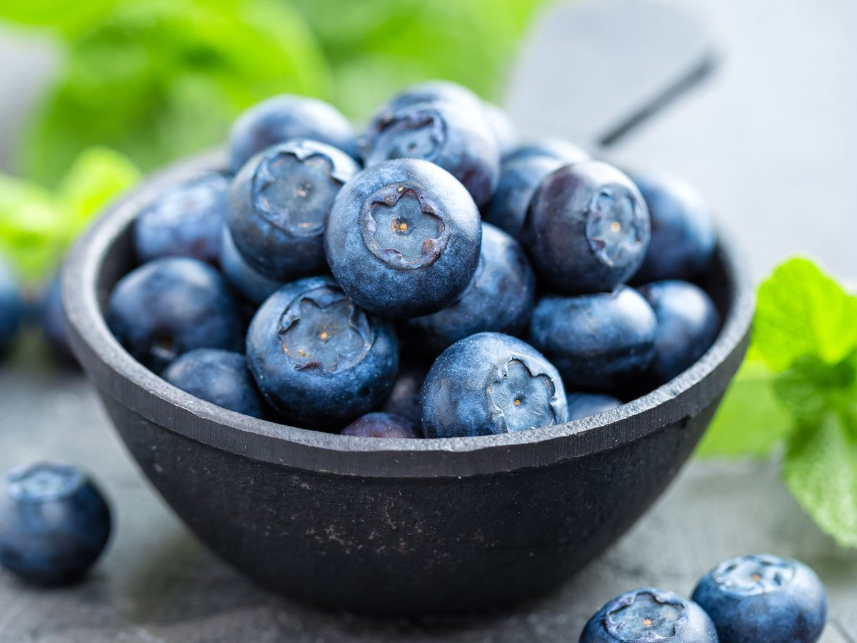 Small bowl of fresh bluberries